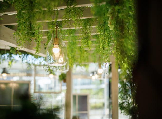 ホリタ205店内植栽イメージ